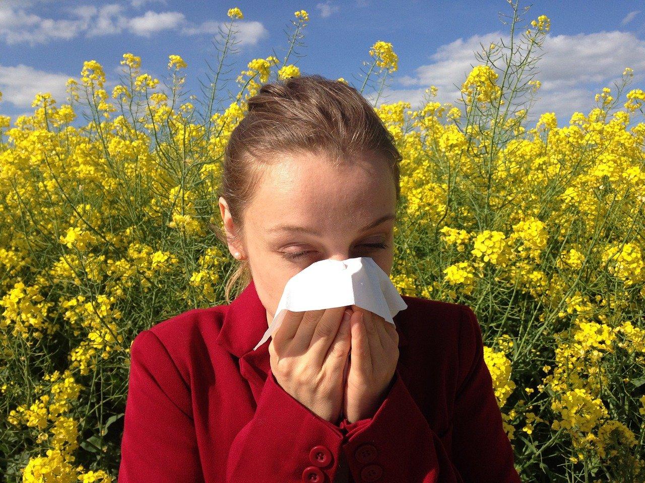 allergy, medical, allergic-1738191.jpg